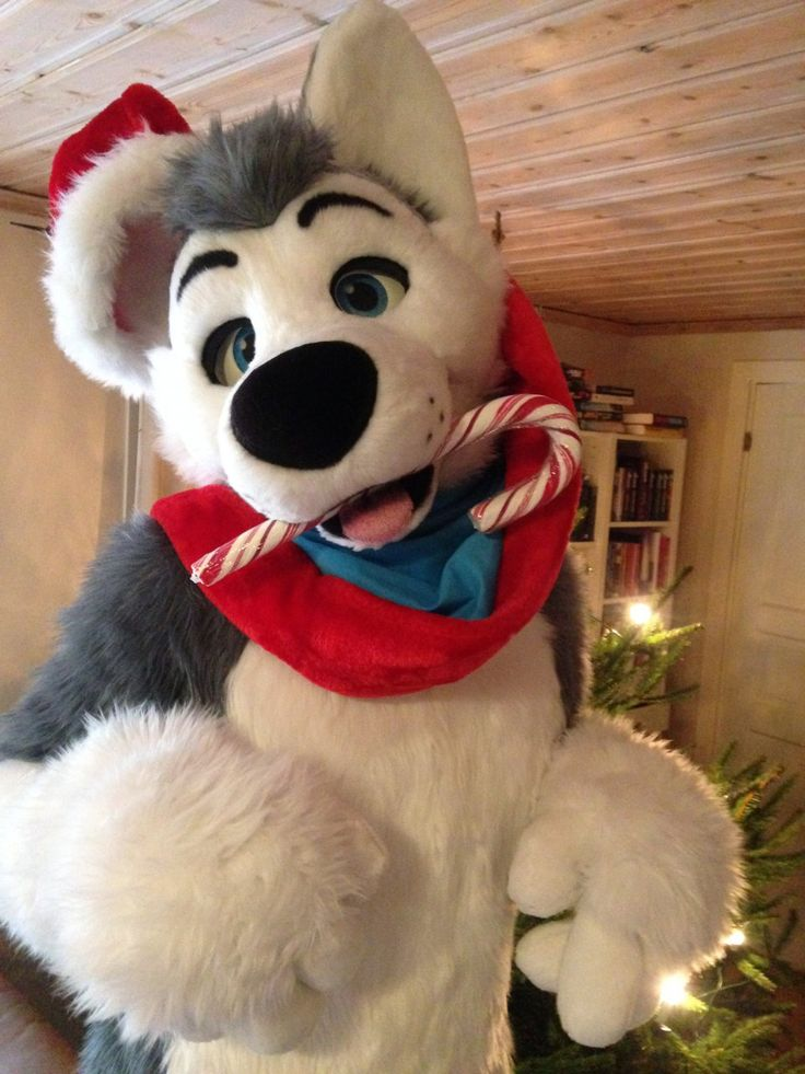 happy the husky - Christmas Furry
